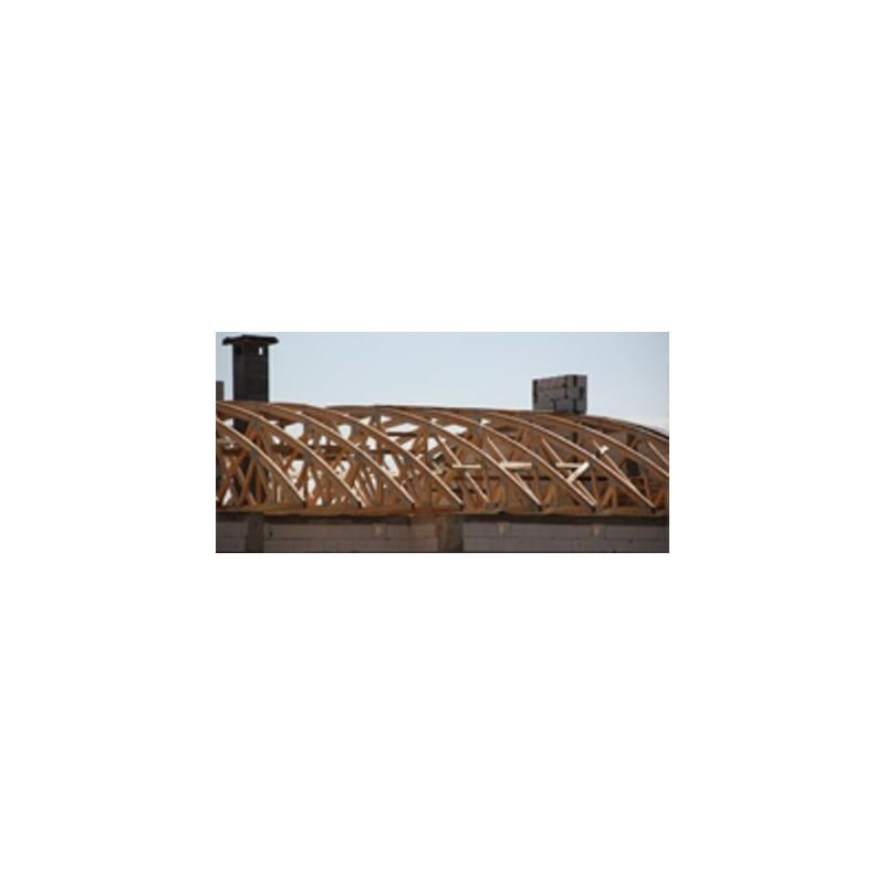 Wiązary Burkietowicz na domy z dachem płaskim i łukowym